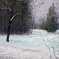 Trees In A Winter Fog by Bob Richey