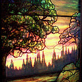 Trees Stained Glass Window by Thomas Woolworth