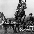 Trick Riding by William G Vanderson