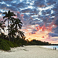Tropical Caribbean White Sand Beach Paradise at Sunset Print by Dave Allen