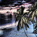 Tropical Evening by Cheryl Young