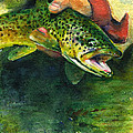 Trout In Hand by John D Benson