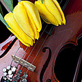 Tulips And Violin by Garry Gay