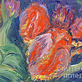 Tulips by Barbara Anna Knauf