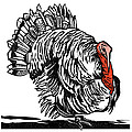 Turkey, Woodcut by Gary Hincks