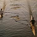 Two Rowers Paddle Down The Charles by Tim Laman