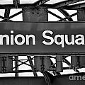 Union Square  by Susan Candelario