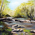 Upstate South Carolina Trout Stream by Phil Burton
