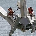 U.s. Navy Servicemen Apply A Coat by Stocktrek Images