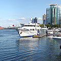 Vancouver Bc Downtown Skyline Panorama Marina Canada. by Gino Rigucci