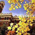 Vanderbilt Kirkland Hall In The Fall by Vanderbilt University
