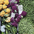 Variety Of Fresh Vegetables - 5d17900-long by Wingsdomain Art and Photography