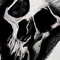 Vasa Skull