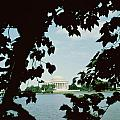 View Of The Jefferson Memorial by John Russell Pope