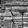 Vintage Garden Tools Bw by Linda Phelps