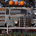 Vintage Harvest by Kimberly Perry