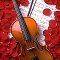 Violin On Sheet Music With Rose Petals by Garry Gay