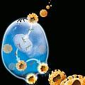 Virus Replication Cycle, Artwork by Claus Lunau