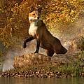 Vixen By The River by Daniel Eskridge