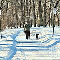 Walking The Dog by Paul Ward
