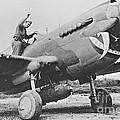 Warhawk P40 1943 by Padre Art