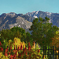 Wasatch Mountains In Autumn Painting by Tracie Kaska