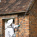 Wasp Infestation Treatment by Sheila Terry