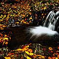 Waterfall by Irinel Cirlanaru