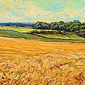 Wheat Field In Limburg by Nop Briex