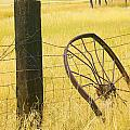 Wheel Looking For A Tractor by Rich Franco