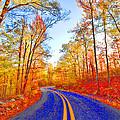 Where The Road Snakes by Douglas Barnard