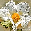 White Paper Flower by Artist and Photographer Laura Wrede