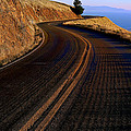 Winding Road by Garry Gay