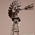 Windmill Sepia by Rebecca Margraf