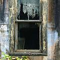 Window In Old Wall by Jill Battaglia