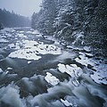 Winter View Of The Ausable River by Michael Melford