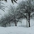 Winterlude by Shawn Hughes