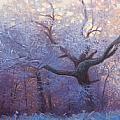 Wonderland by Jonathan Howe