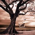 Woodland Swing by Sharon Lisa Clarke