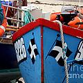 Working Harbour by Terri Waters