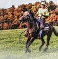 Wrangler And Horse by Susan Candelario