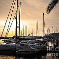 Yachts At Sunset by Carlos Caetano