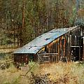 Yesteryear Shed 2 Print by Dale Stillman