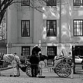Your Carriage Awaits Print by Kristine Patti