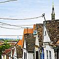 Zemun Rooftops In Belgrade by Elena Elisseeva