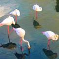 Zoo in Mauritius