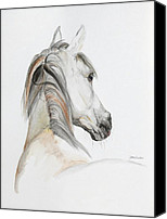 Arabian Horse Drawings Canvas Prints - Ansata El Naseri Canvas Print by Janina  Suuronen