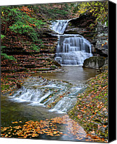 Waterfalls Canvas Prints - Autumn Flows Forth Canvas Print by Robert Harmon