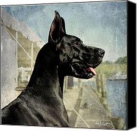 Great Dane Canvas Prints - Great Dane Canvas Print by Fran J Scott