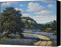 Texas Bluebonnets Canvas Prints - Hill Country Treasures Canvas Print by Kyle Wood